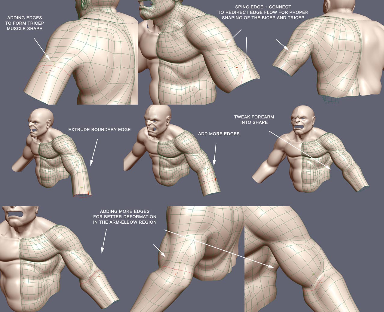 Basic concepts behind the muscle rigs ]